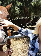 Blonde.., Amateur Violations
